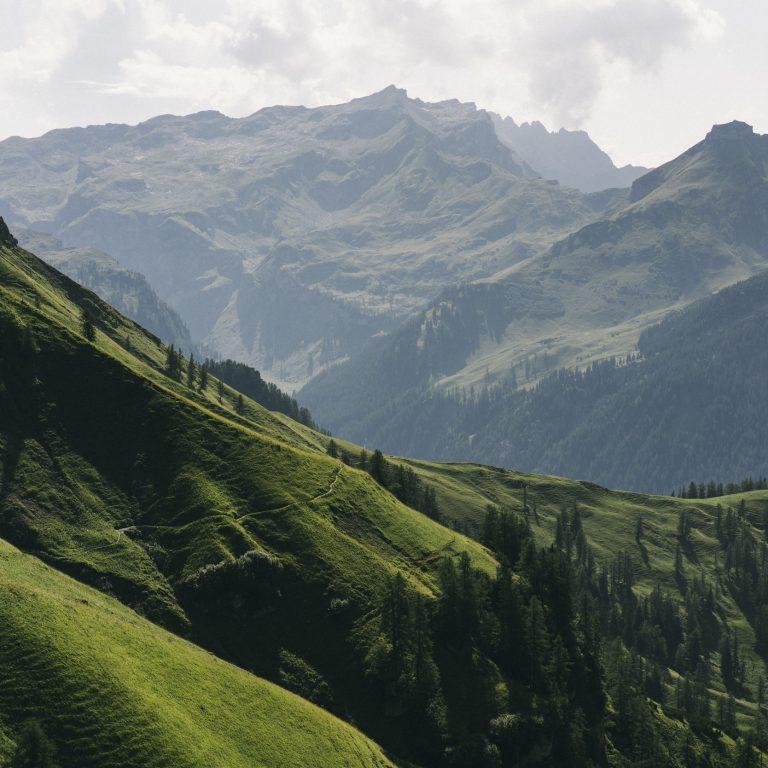 Weg zur Setschalpe Richtung Liechtenstein © Dominic Berchtold / Vorarlberg Tourismus