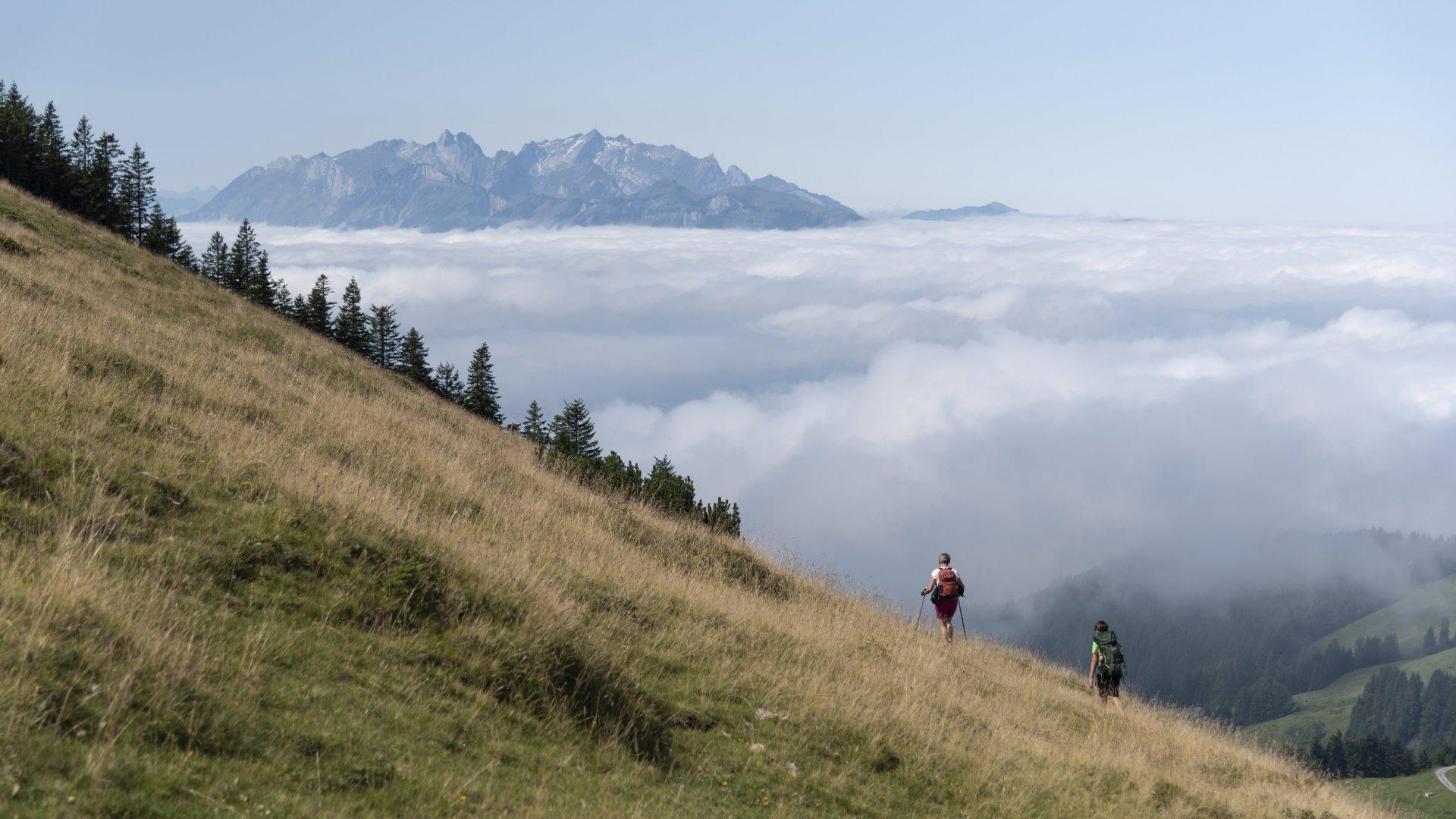 Abstieg zum Treietpass  (c) Martin Vogel / Vorarlberg Tourismus