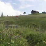 Alpwegkopfhütte  (c) Martin Vogel / Vorarlberg Tourismus