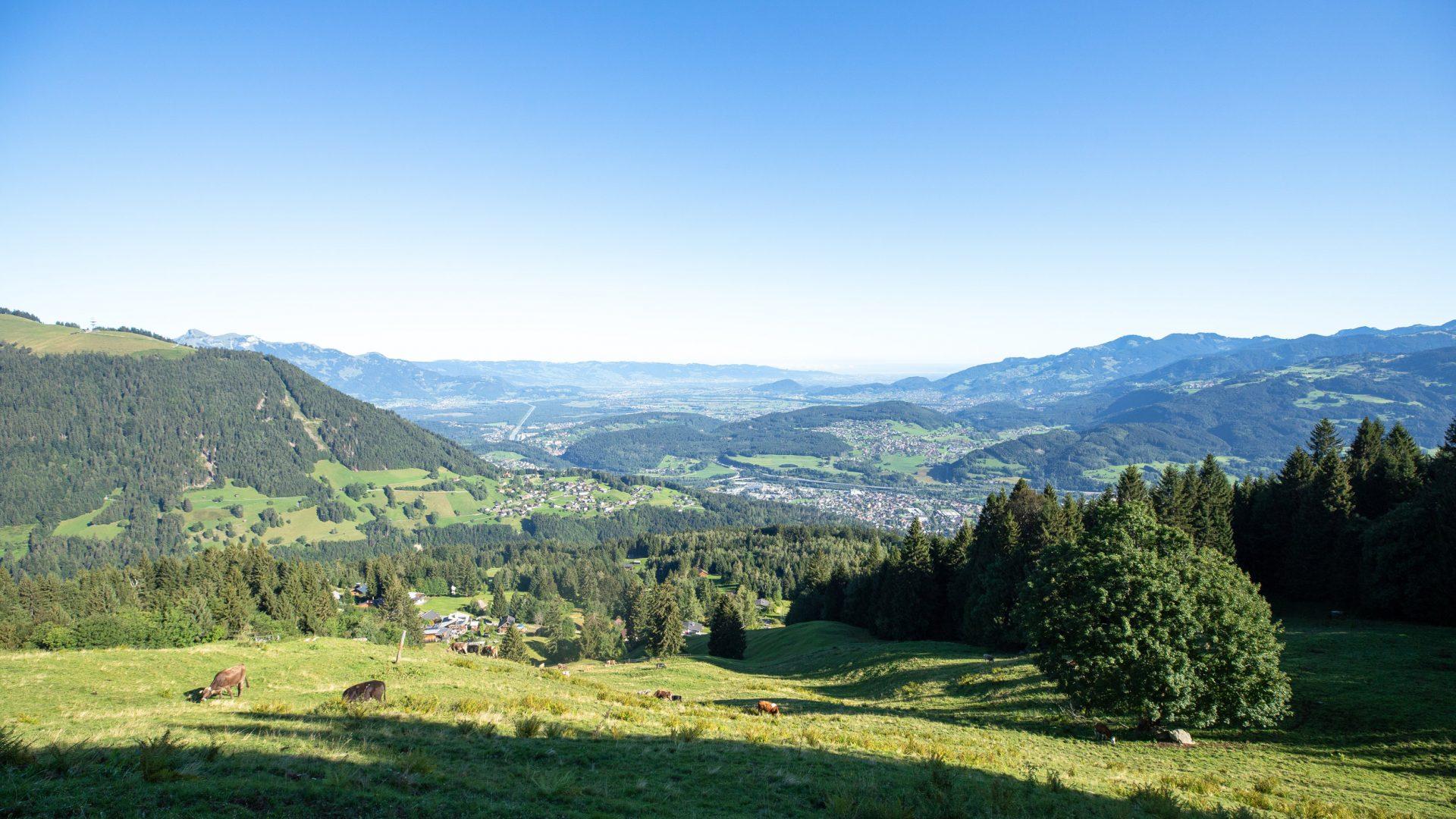 Blick ins Rheintal (c) Lucas Tiefenthaler / Vorarlberg Tourismus