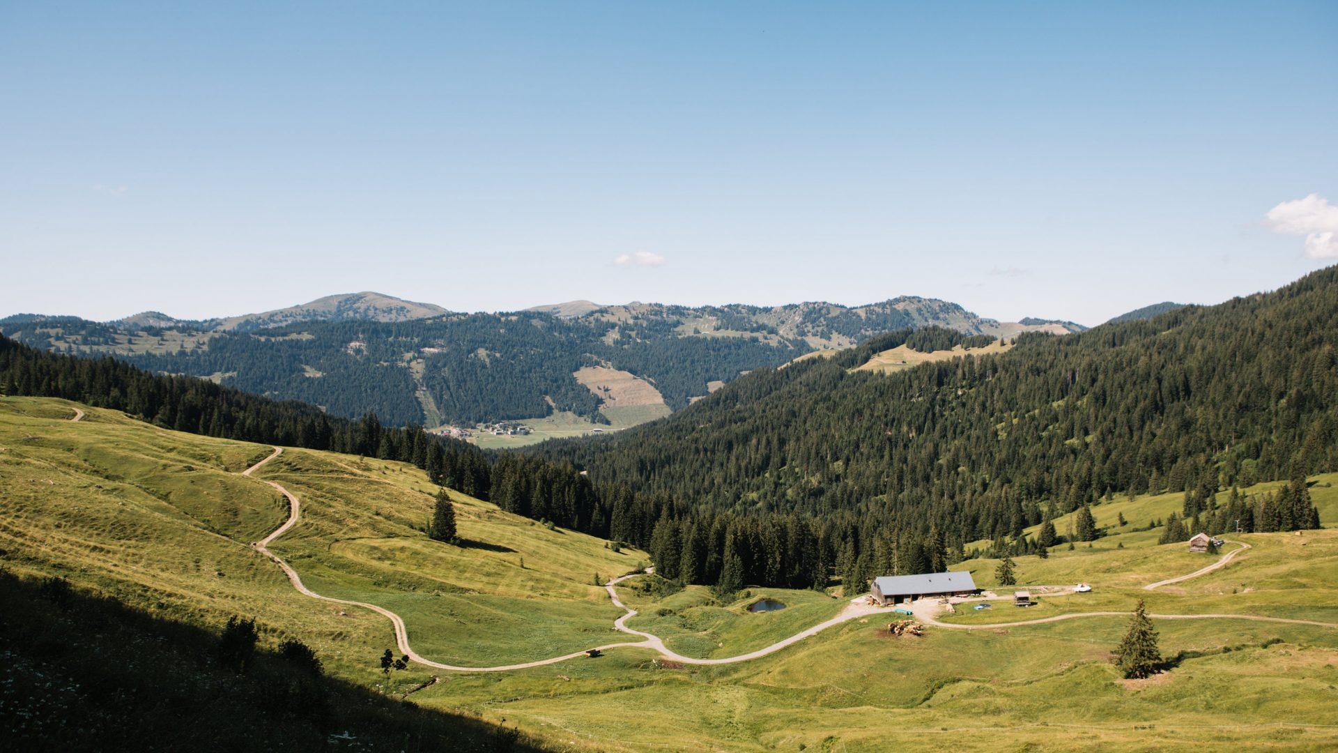 Güntle Alpe (c) Nina Bröll / Vorarlberg Tourismus