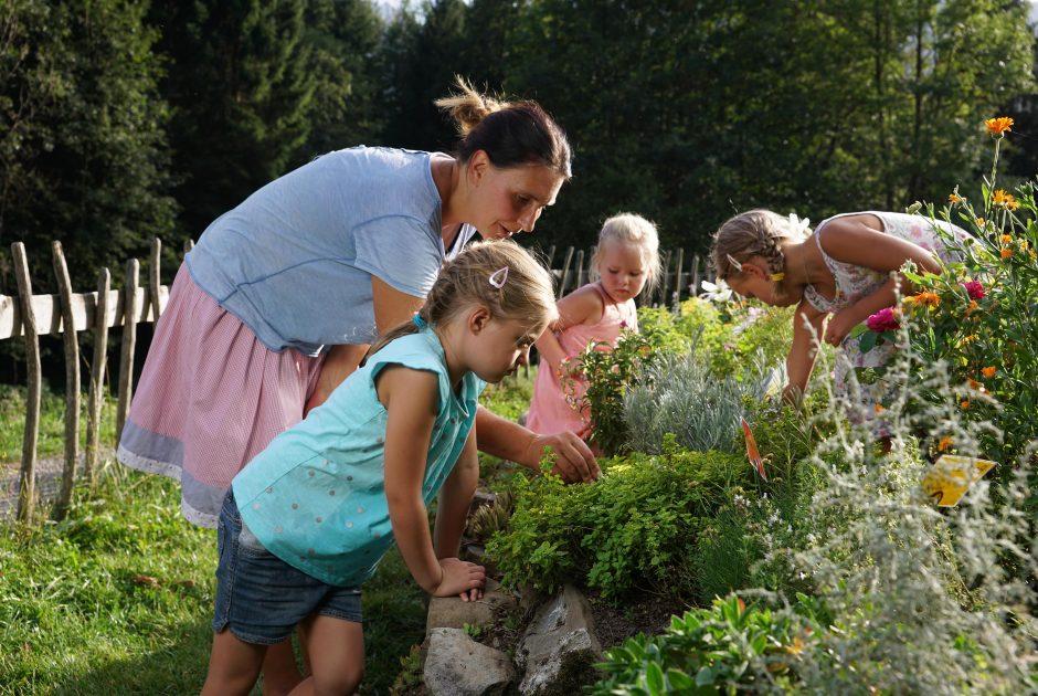 Im Kräutergarten Holdamoos, Au-Schoppernau (c) Ludwig Berchtold - Au-Schoppernau Tourismus