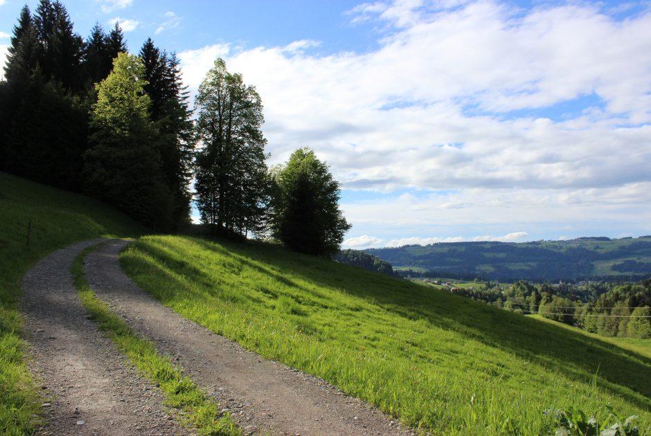 Rotenberg Waldweg (c) Sonja Bilgeri - Hittisau Tourismus