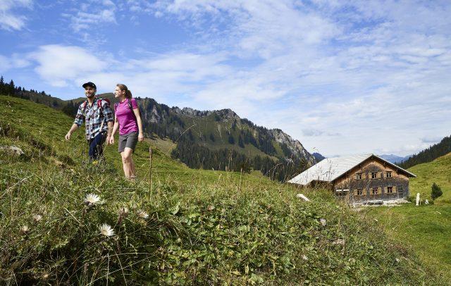 Wandern in der Nähe der Alpe Sattelegg in Au (c) Adolf Bereuter I Bregenzerwald Tourismus
