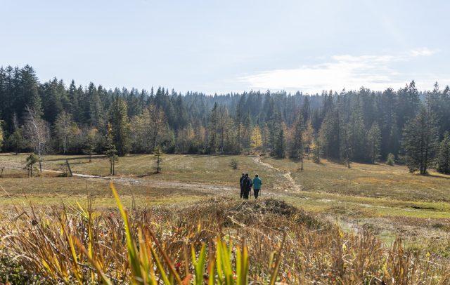 Vorarlberger Naturpicknick im Fohramoos(c)Agnes Ammann_Voralrberg Tourismus