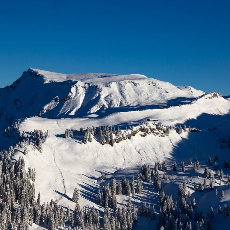Ausblick Laternser Skigebiet © Marvin Schenk / Vorarlberg Tourismus