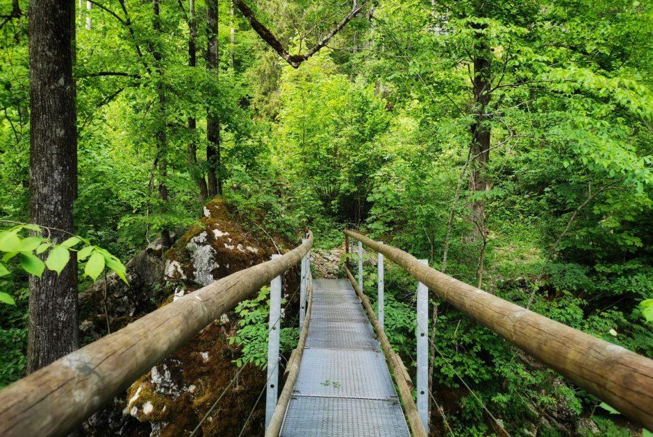 Höhlenpark in Bezau (c) Cornelia Kriegner Bregenzerwald Tourismus