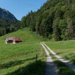 Spätenbachalpe (c) Packyourthingsandtravel / Vorarlberg Tourismus