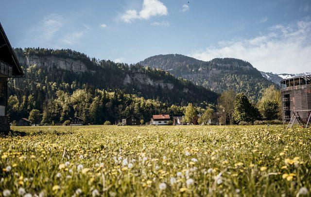 Bezau Frühling (c) Bildfokus-Fotografie