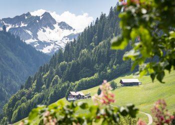 Blick von Mittelberg Richtung Talschluss (c) Dietmar Denger - Vorarlberg Tourismus