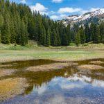 Wildried Silbertal