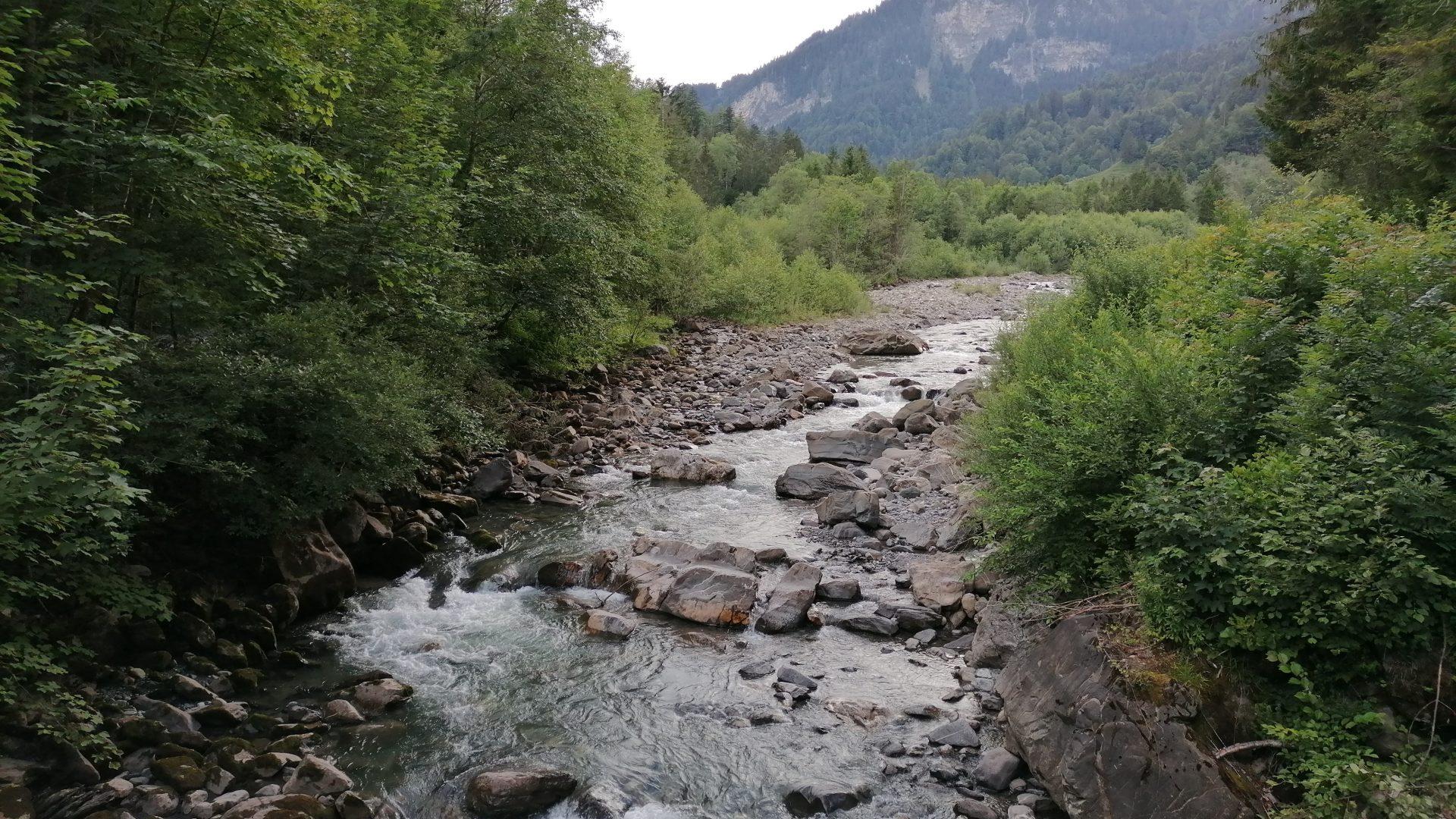 Der Weg im Mellental entlang des Mellenbaches