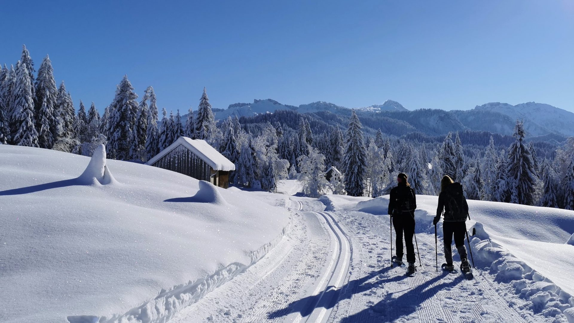 Winterwandern von Sibratsgfäll nach Schönenbach