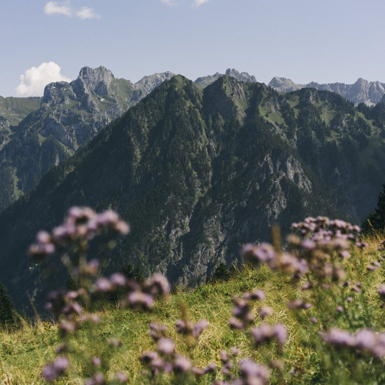 11_Brand_Blick_Richtung_Zimba © Dominic Berchtold / Vorarlberg Tourismus
