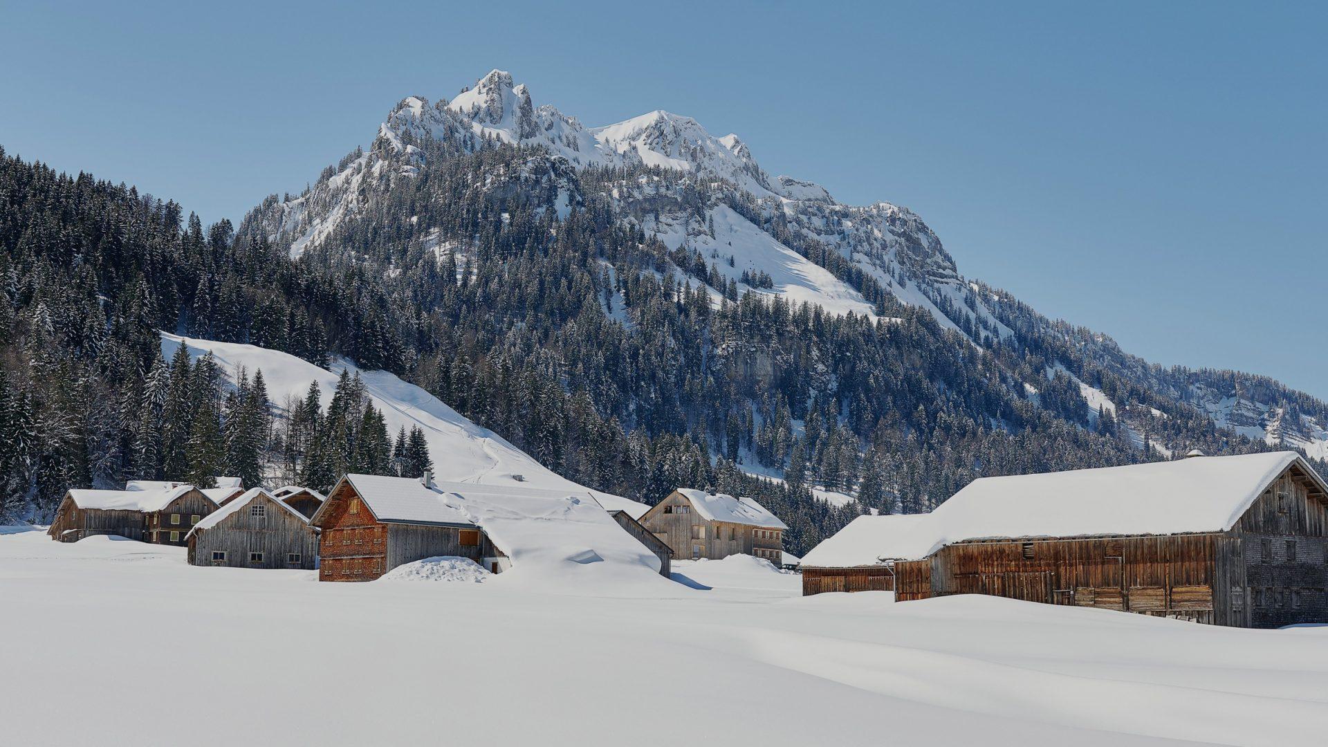 Schönenbach im Winter